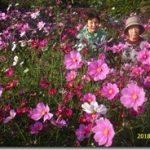 新聞掲載写真とお客様写真です(*^▽^*)。